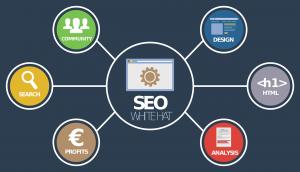 Gute Seo Firma für Optimierung