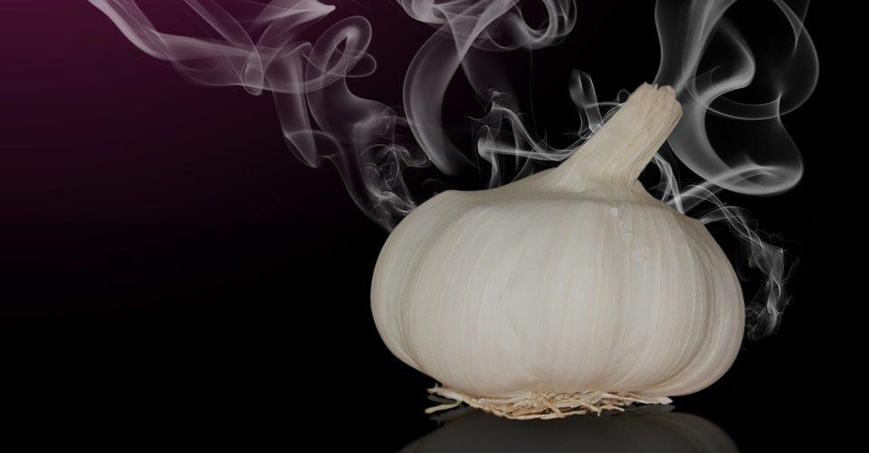 ozonbehandlung gegen Geruch